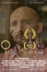 bridging_color_movie_poster
